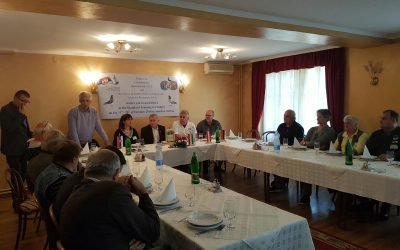 Standard training for judges in Serbia