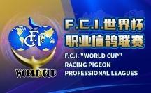 "F.C.I. ""World Cup"""