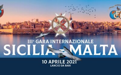 III. Gara International