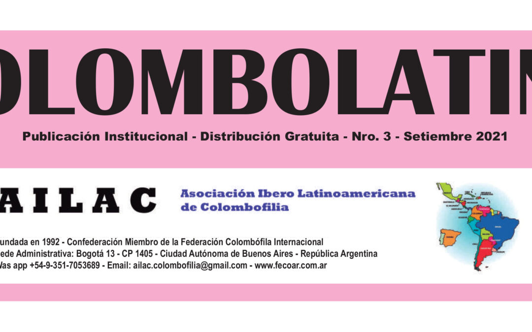 The lastest edition of COLOMBOLATINA has been released